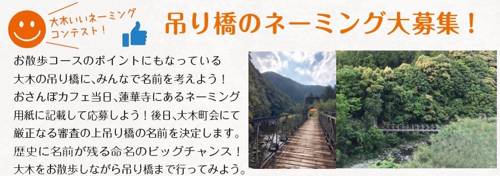 大木いいネーミング コンテスト! 吊り橋のネーミング大募集!