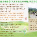 第4回 田植え体験 大木米を実らせ隊【2019年6月9日(日曜)】